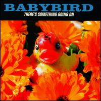 Babybirdtheressomethinggoingoncover
